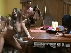 Pornstars fucked in a group sex adventure